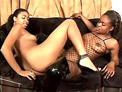 Hot lesbian sistas caress each other